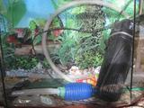 Новый аквариум для рыб с оборудованием